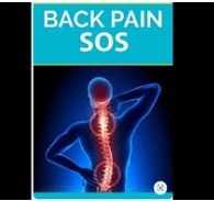 back, lower back pain, reason, pain, back pain, back muscles, low back pain, upper back pain, back to you, exercises for lower back pain, lower right back pain, back pain relief, muscles of the back, lower back muscles, lower back pain relief, mid back pain, lower back pain stretches, how many adults in the us, lower back pain causes, back of knee pain, pain in lower right back, pain in lower left back, yoga for back pain