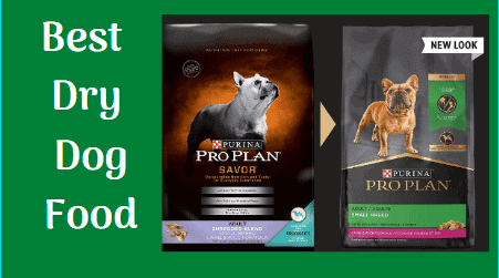 best dry dog food in india, best dry dog food brands in india, Debashree dutta, best dry dog food for golden retrievers, best dry dog food for seizures, best dry dog food for german shepherd, best dry dog food for pregnant dogs uk, best dry dog food uk, best dry dog food for small dogs, best dry dog food reviews consumer reports, what is the best dry dog food, best dry dog food reviews best dry dog food for small dogs, best dry dog food brands, best dry dog food for puppies, best dry dog food ratings, best dry dog food for allergies, best dry dog foods ranked, best dry dog food older dogs, best dry dog food with grain, best dry dog food for senior dogs, best dry dog foods 2021, best dry dog food for sensitive stomachs, best dry dog food for dogs, best dry dog food 2021, best dry dog food for german shepherds, best dry dog food 2020, best dry dog food for weight loss, best dry dog food for skin allergies, best dry dog food, best dry dog food for puppies, best dry dog food uk, best dry dog food 2020, best dry dog food 2021, best dry dog food for small dogs, best dry dog food australia, best dry dog food brands, best dry dog food canada, best dry dog food reviews, best dry dog foods ranked, best dry dog foods ranked by vets, best dry dog food for allergies, best dry dog food for senior dogs, best dry dog food 2020 reviews, best dry dog foods ranked 2019, best dry dog food for itching dogs, best dry dog food for picky dogs, best dry dog food for german shepherd, best dry dog food for sensitive stomach, best dry dog food for skin itching, costco best dry dog foods, reddit best dry dog food, nutritionally best dry dog food, fda best dry dog food 2019 for large dogs, best dry dog food in india, best dry dog food for shih tzu, best dry dog food 2020, best dry dog food brands, best dry dog food for puppies, best dry dog food for pitbulls, best dry dog food 2021, best dry dog food for huskies, best dry dog food, best dry dog food for small dogs, best dry dog food for large br